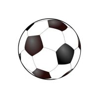 Sports Balls Suppliers in bikaner