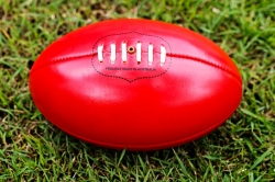 Australian Rule Football Suppliers in agra